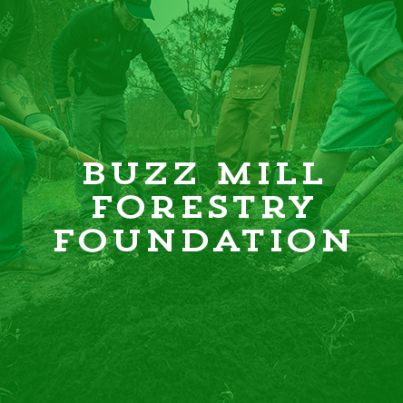 BMForestryFoundation.jpg