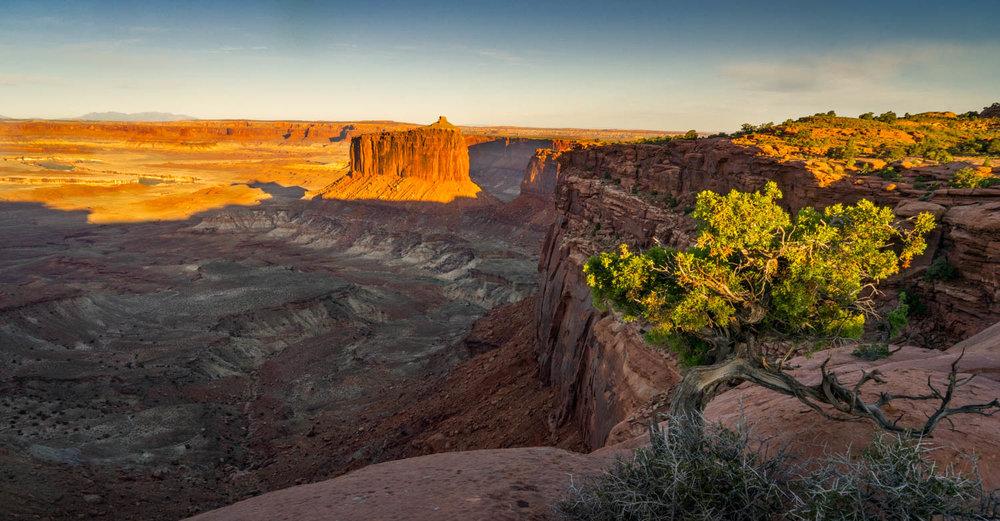 Canyonlands Color.