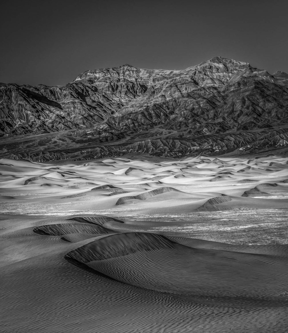 Mesquite Dunes Black and White