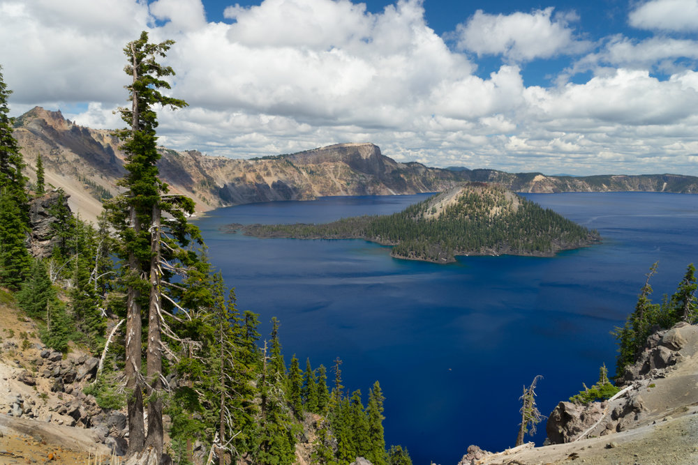 Crater Lake, home of the most beautiful blue water you will ever see.