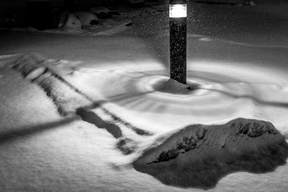 Goodale Park Snow