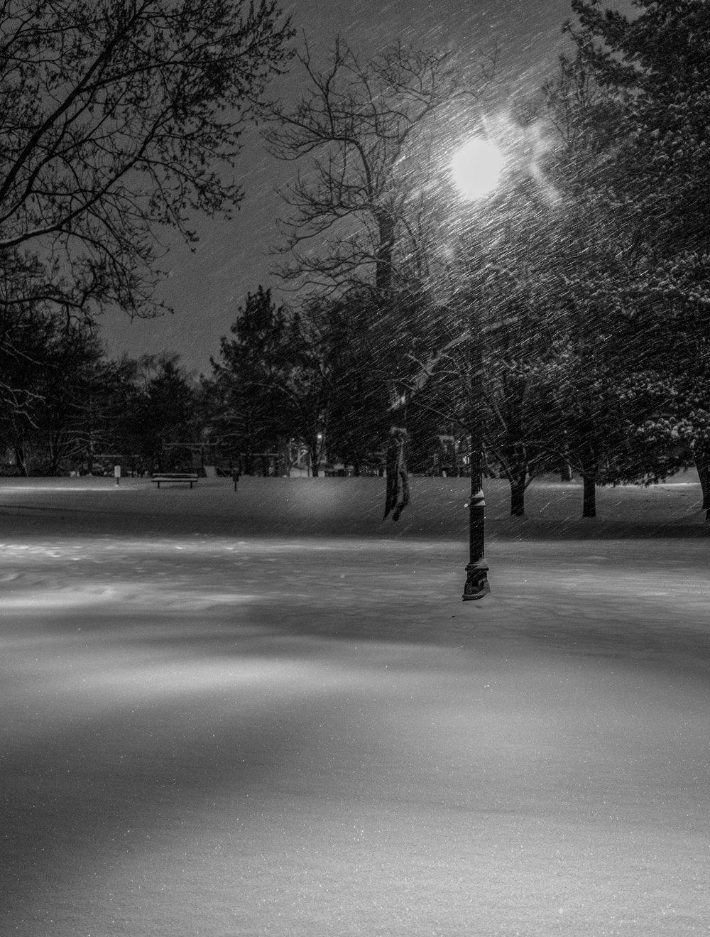 In Goodale Park Lamp Post 3