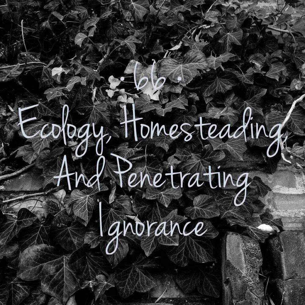 #66 | Ecology, Homesteading, and Penetrating Ignorance