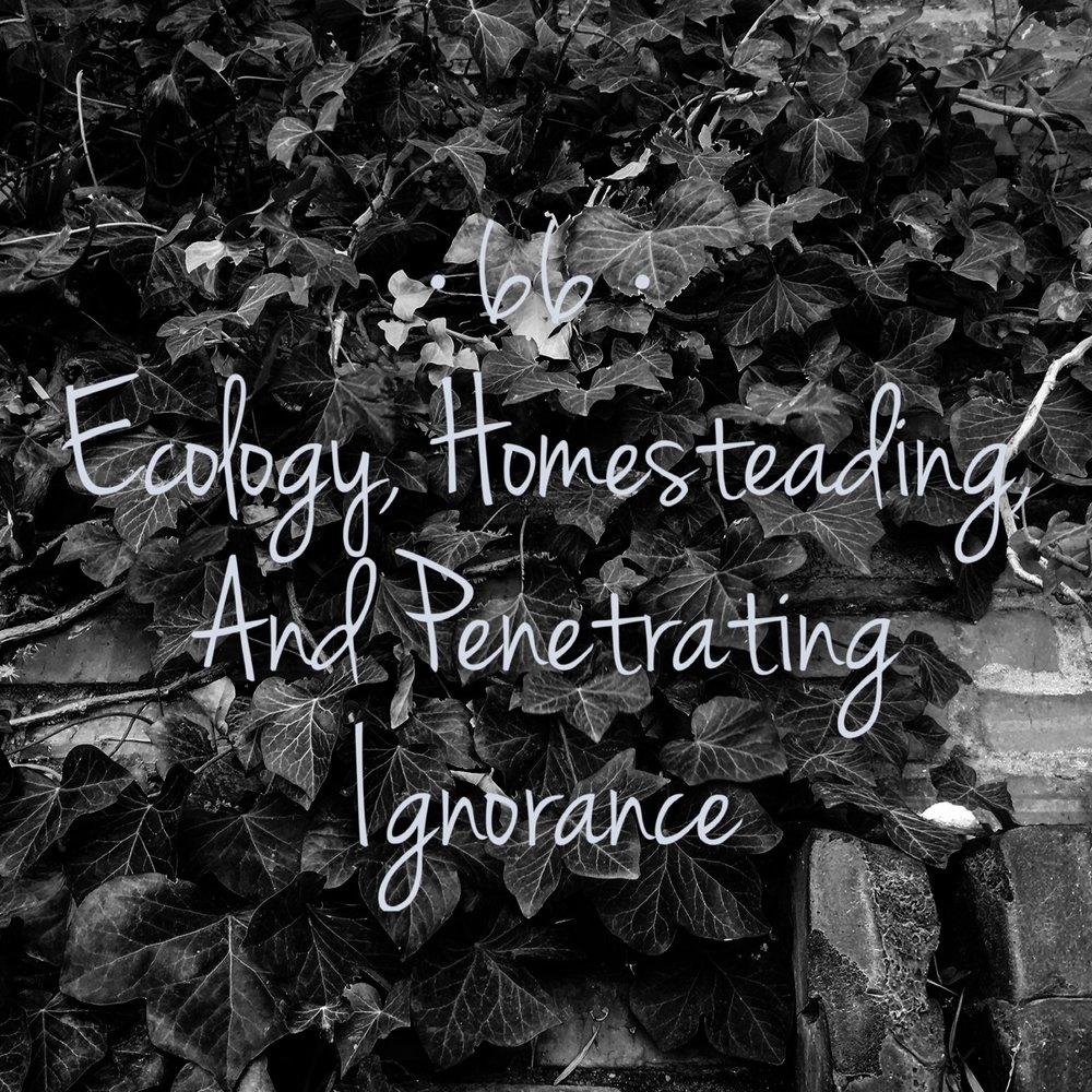 #66 | Ecology, Homesteading, and Penetrating Ignorance