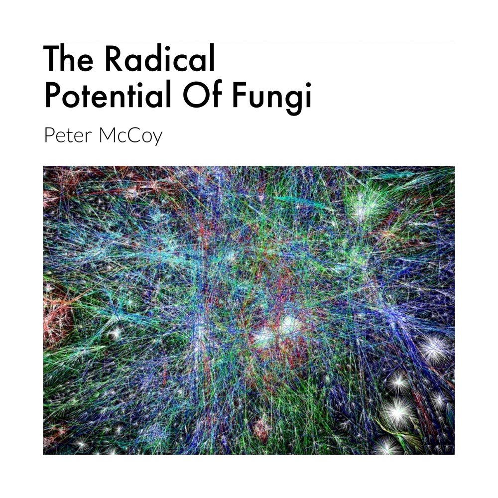 #98 | Radical Mycology: The Radical Potential Of Fungi w/ Peter McCoy