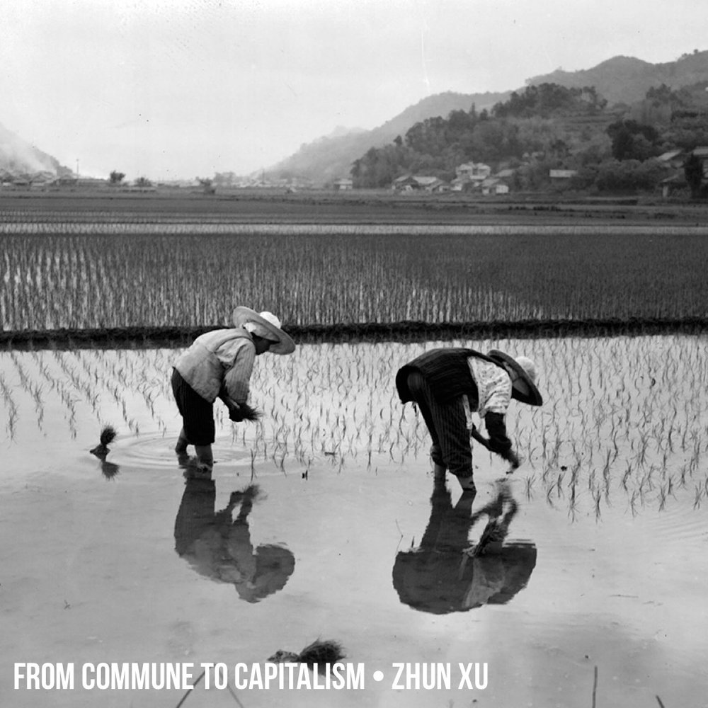 Patreon: From Commune to Capitalism: How China's Peasants Lost Collective Farming and Gained Urban Poverty w/ Zhun Xu
