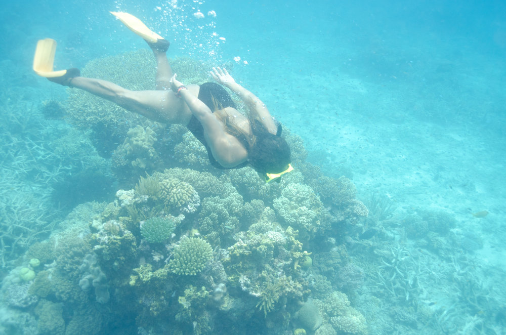About Valerie Sanchez- Australia Great Barrier Reef.jpg
