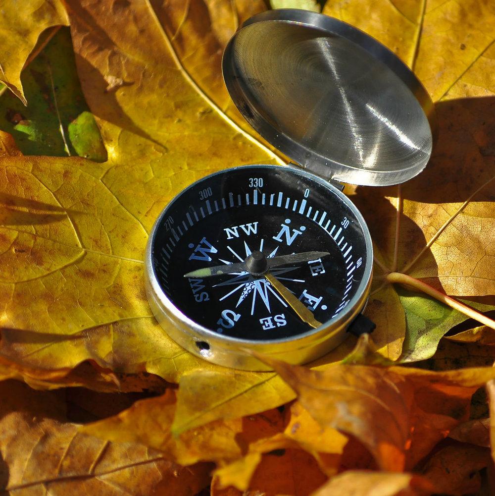 compass - square.jpg