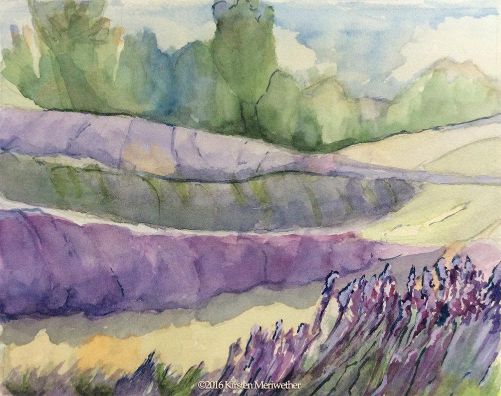 Lavender's In