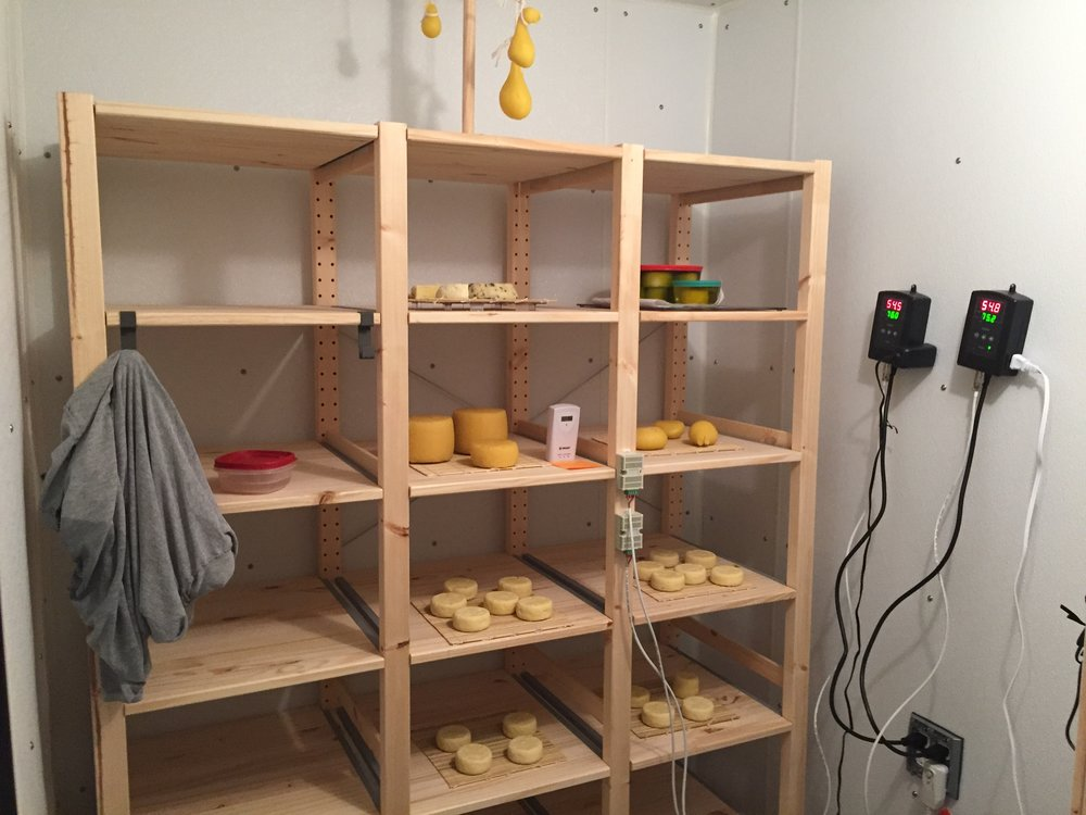 Cheese curing in the Dr. Schindler's cheese cave