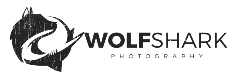 WolfShark Photography