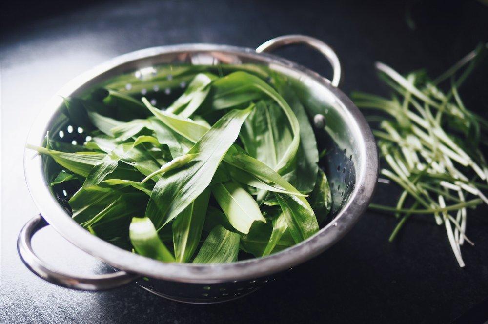 preparing-wild-garlic
