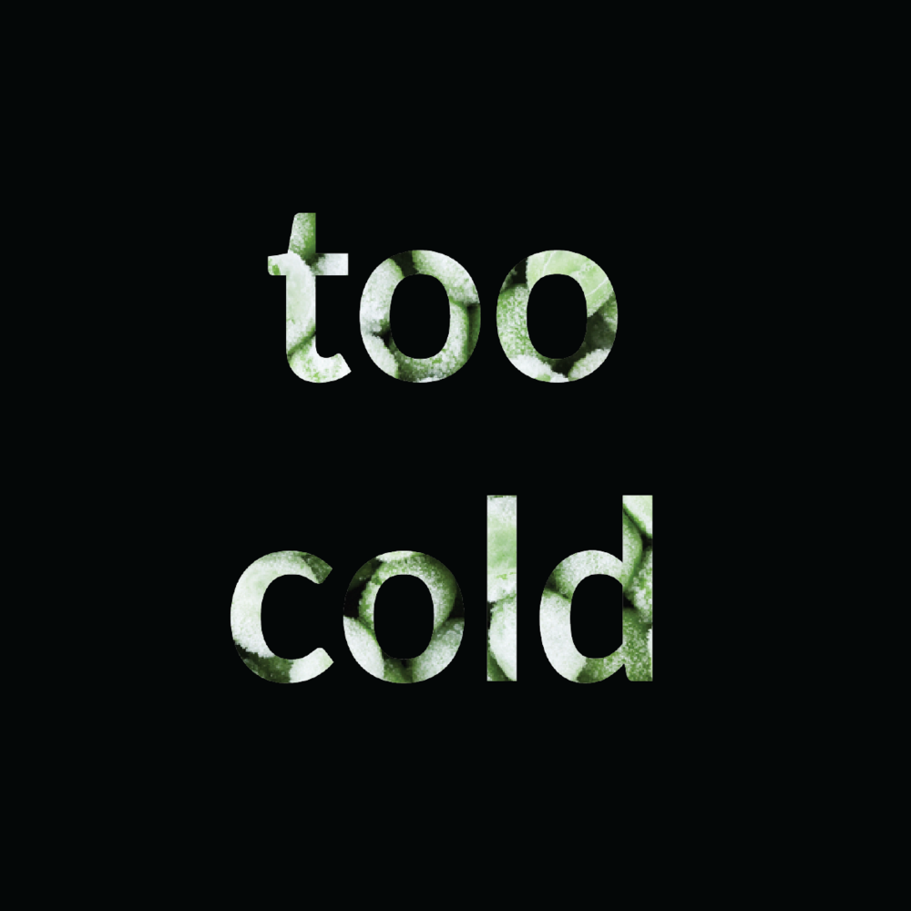 too cold peas.png