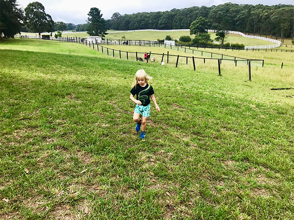 Freedom to run is one of the best things about a farm stay