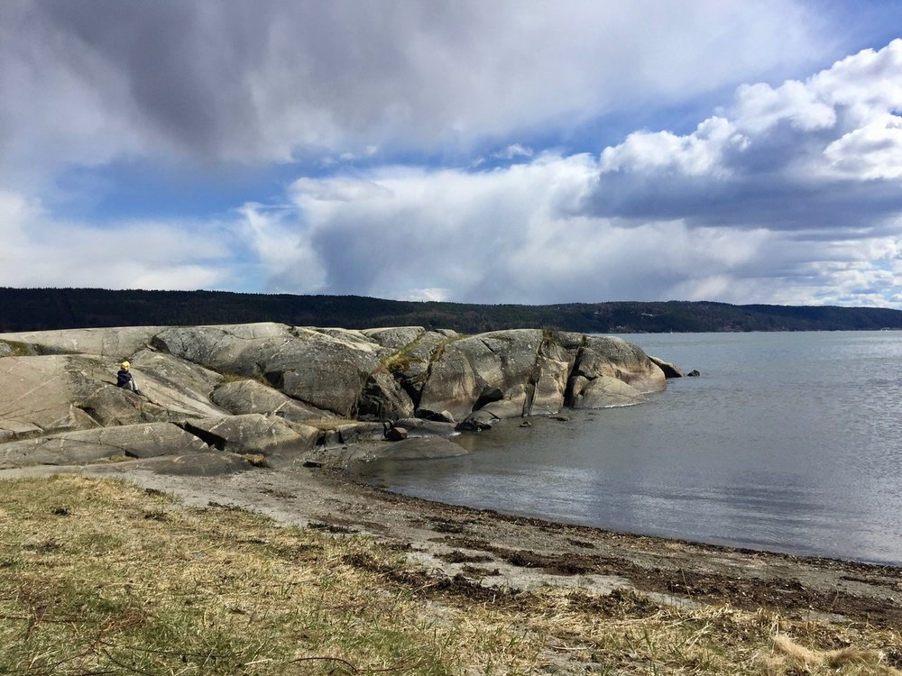 One of our local beaches at Nesodden where I love to swim, sunbathe and reflect