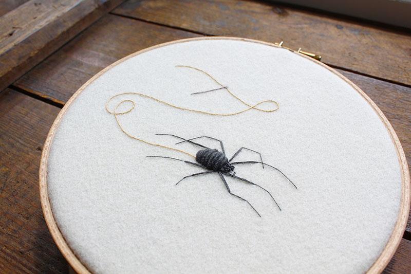 Sewing spider by Adam Pritchett