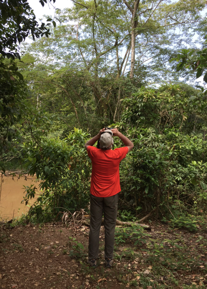 Birding at Yoi Ecolodge, Amacayacu River, Amazon, Colombia, 2015.