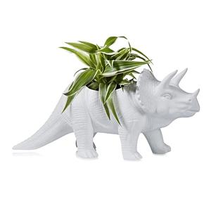 Dinasour Planter.jpg