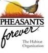Pheasants forever.jpg