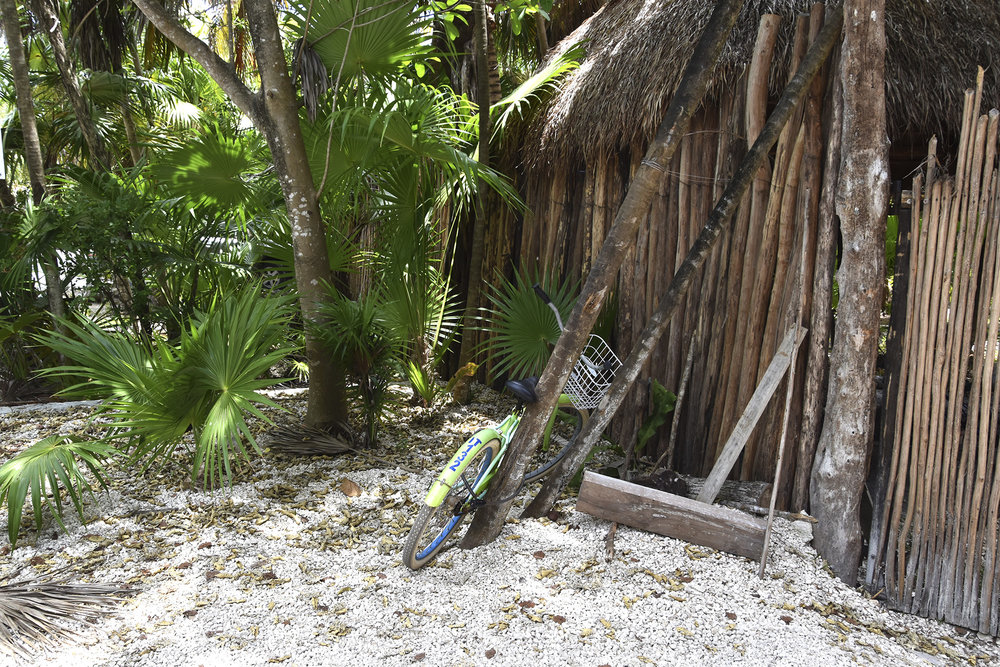 bike-jungle-hut-tulum