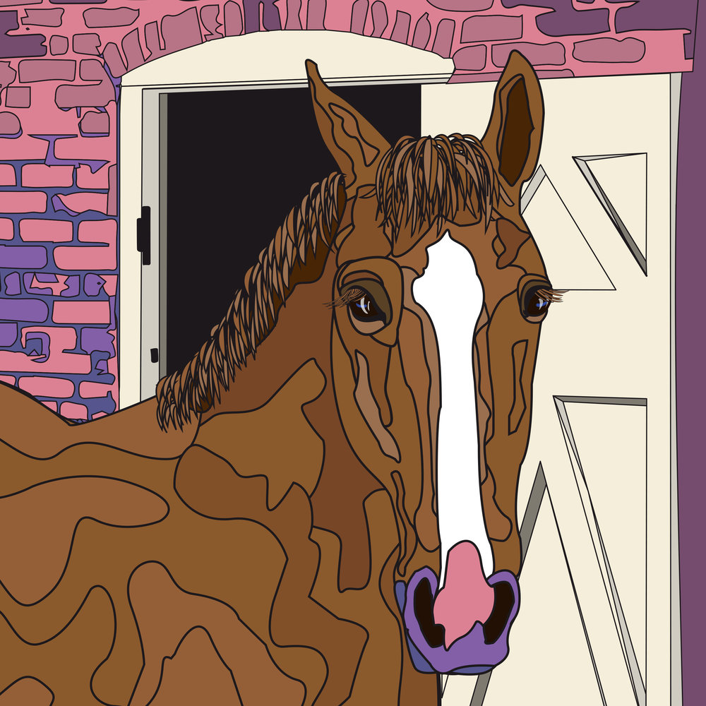 horse-head-illustration-art-cartoon
