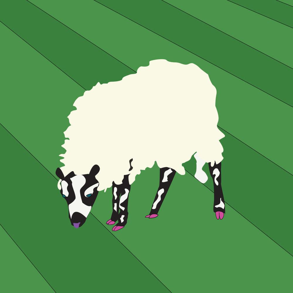 badger-faced-sheep-art
