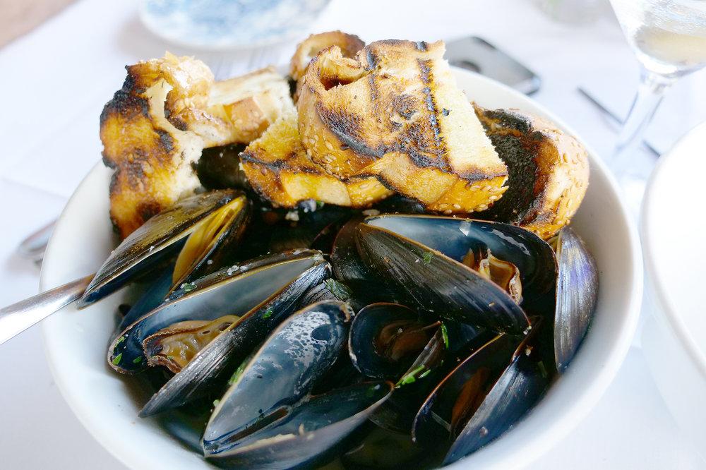 PPI_Mussels.jpg