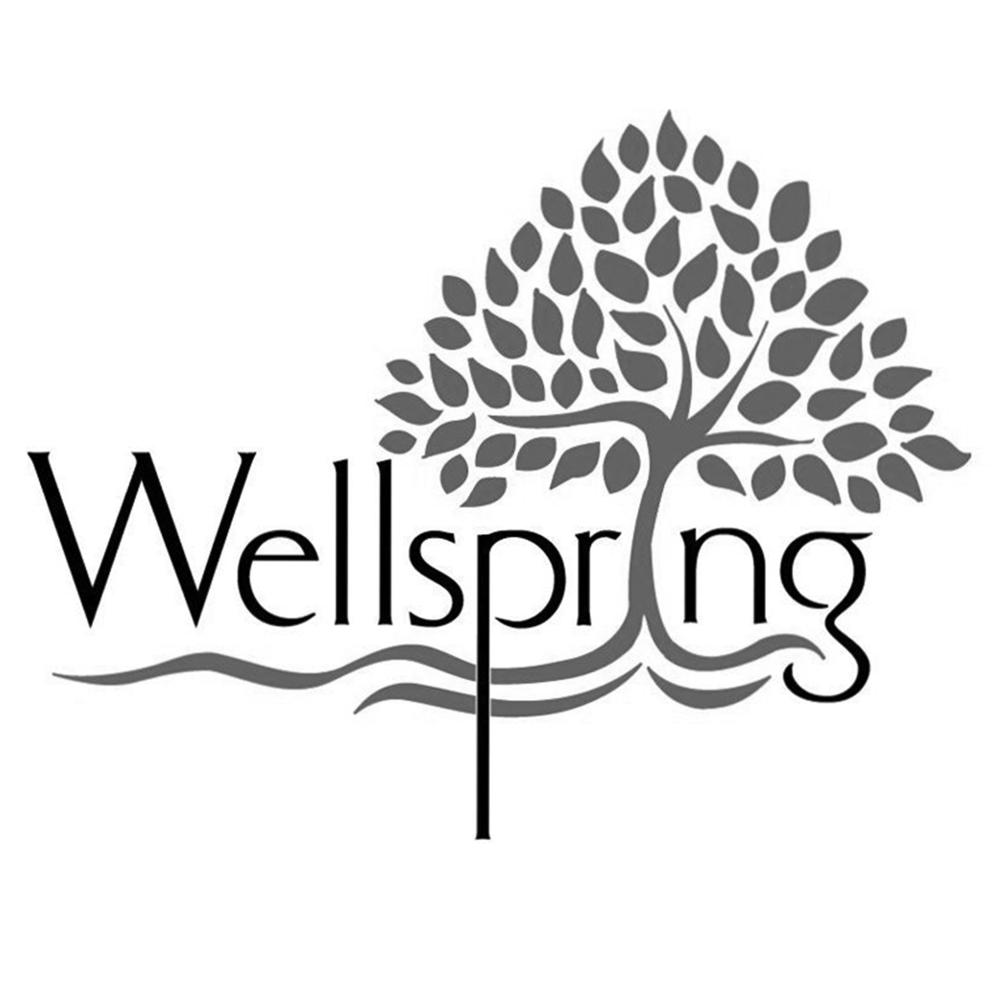Wellspring_logo.png
