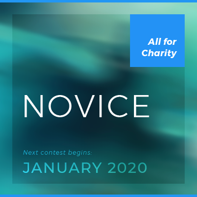 classic contest — novice  For inexperienced investors. Begins in January and runs for one year. Entry fee is $100 (all for charity). • Registration opens in late fall  • Get a nudge when registration opens   • See past winners