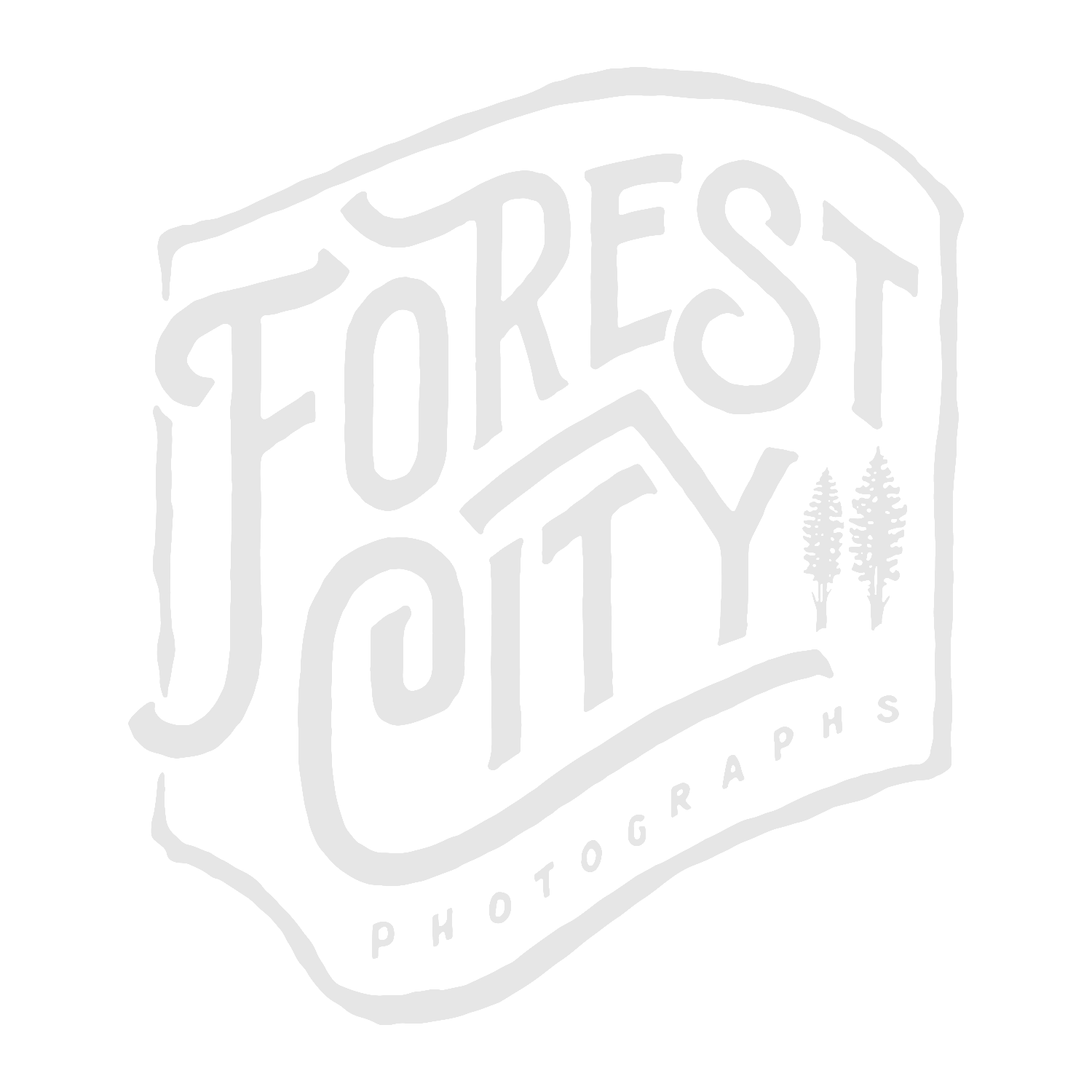 Forest City Photographs
