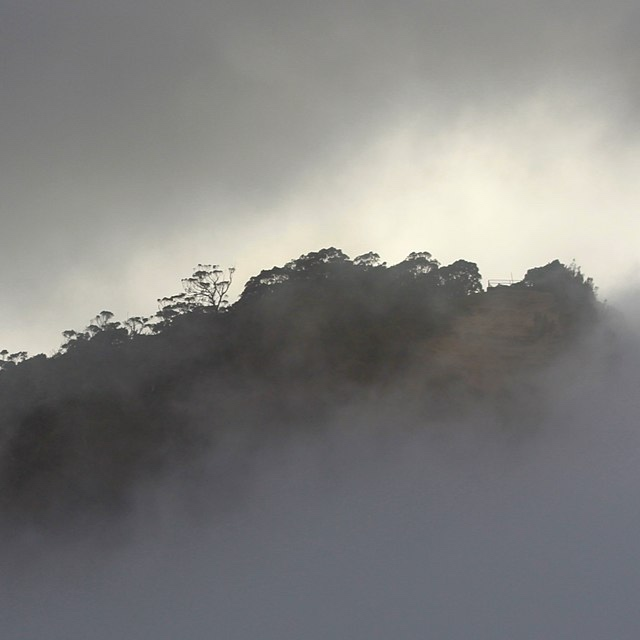 JUNE 30Musik in Nebel (Fog Music)improvisation and ambiguitywith Liminal Sound Series -