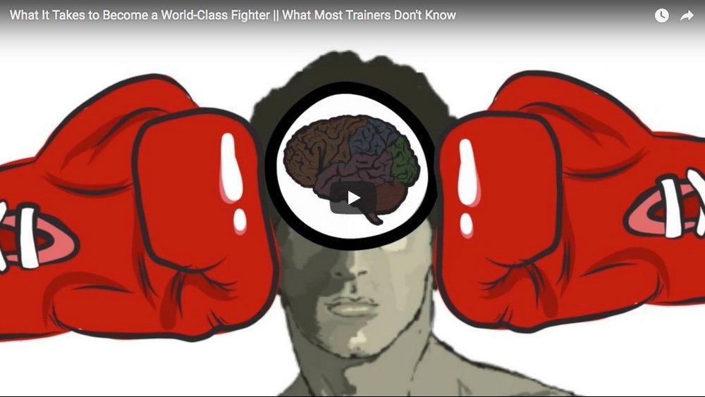 WORLD CLASS FIGHTERS.jpeg