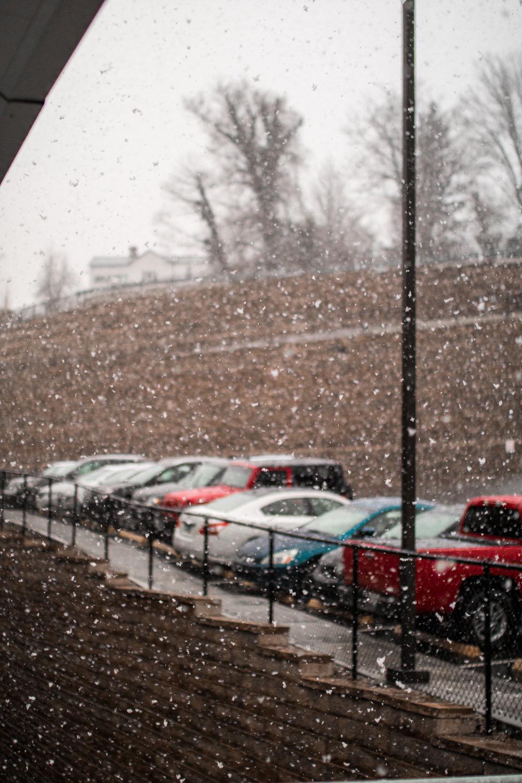 Snow - 6d arrival-2.jpg