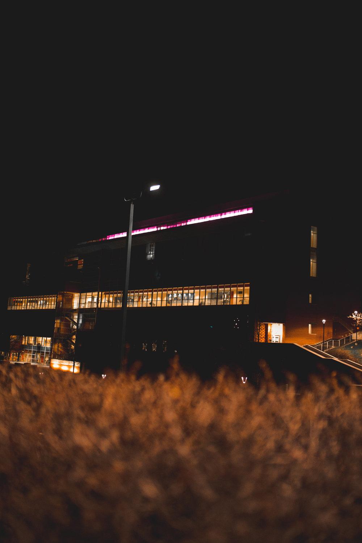 night-4.jpg