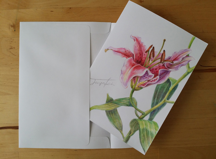 colorpencil_lily.jpg