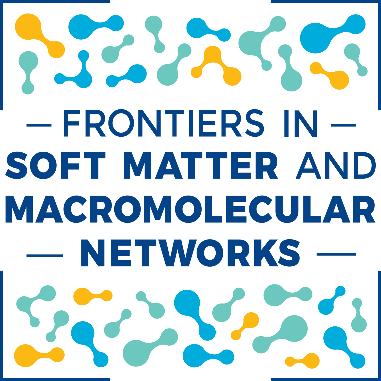 Frontiers in Soft Matter and Macromolecular Networks