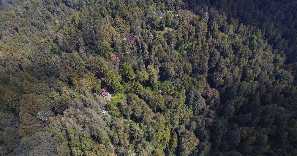 Fern Flat Drone 1.jpg