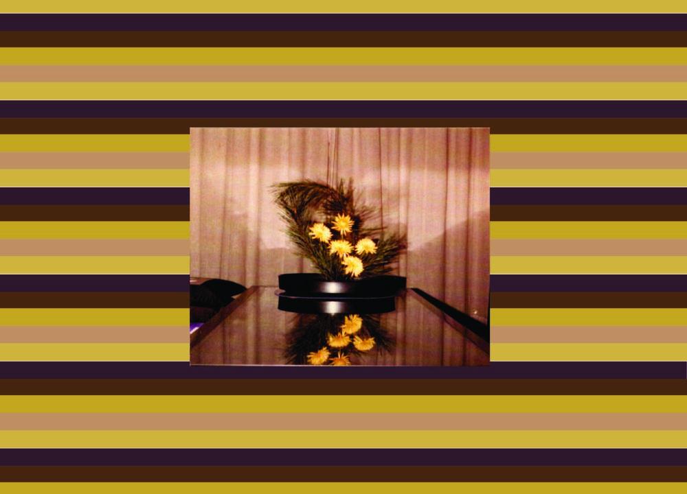 504f8-yellowflowerspine-01.jpg