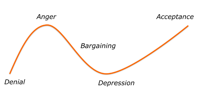 Grief cycle divorce.png
