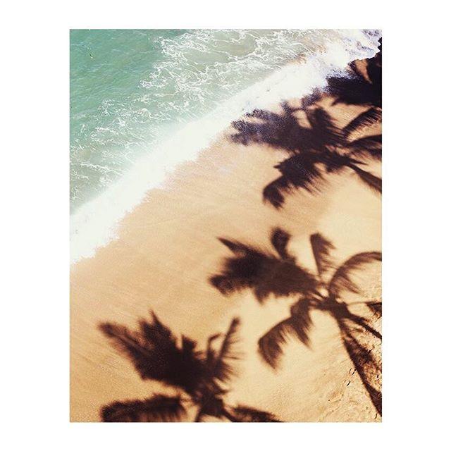 Les inspirations sont riches et variées pour la prochaine collection printemps été 2020 . Elle ne saurait trop tarder ...🤫😎😉 . . . . . . . . #newcollection#printemps#ete#colorful#couleurs#inspiration#moodboard#mood#madeinfrance#fabricationfrancaise#frenchbrand#childhood#enfant#maman#kids#kidz#pourenfantssagesoupas#summer#spring#palm#palmtrees#beach#serielimitee#limitededition#paris