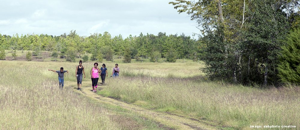 Planning for the future of Precinct 1 parks and trails -
