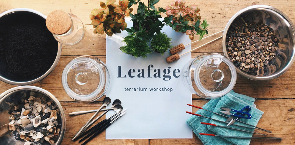 Leafage Terrarium Workshop at Smugglers Cafe Putney