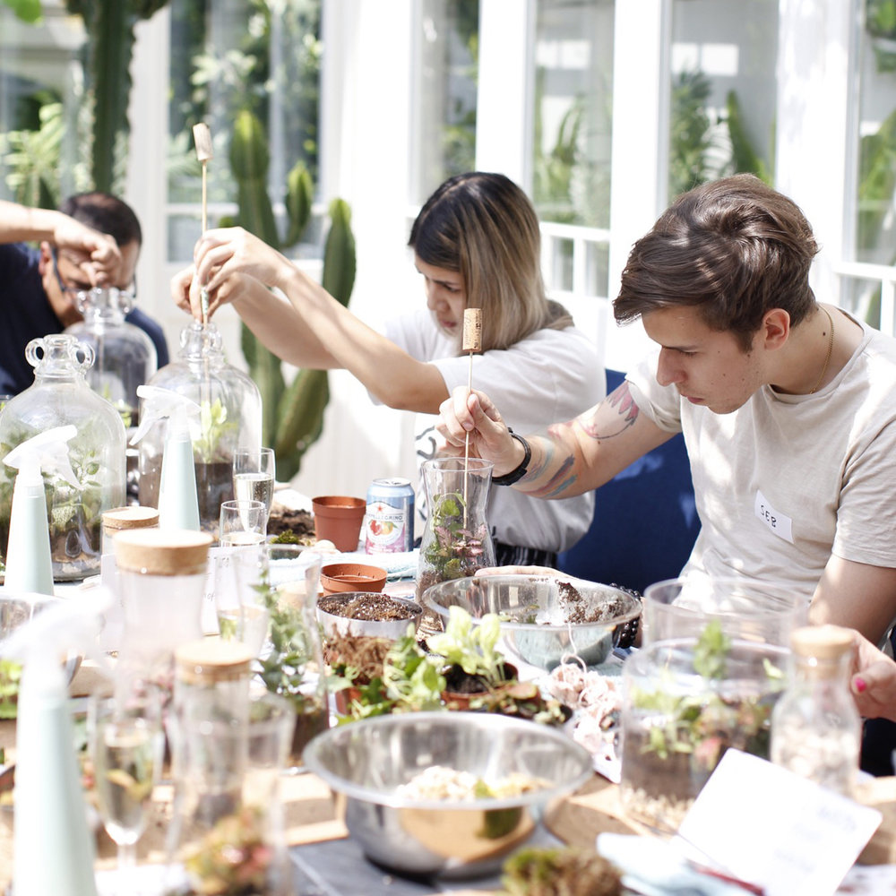 Terrarium Workshop Dates - BOOK NOW >