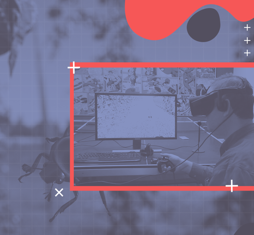 VR HOPS SCOUTING - University Partnership, Grant Funded