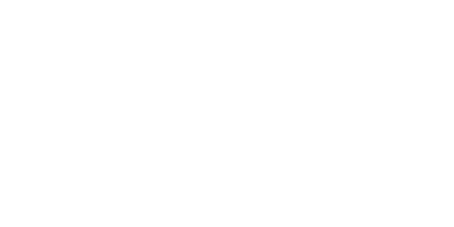 DRONE PRO ACADEMY
