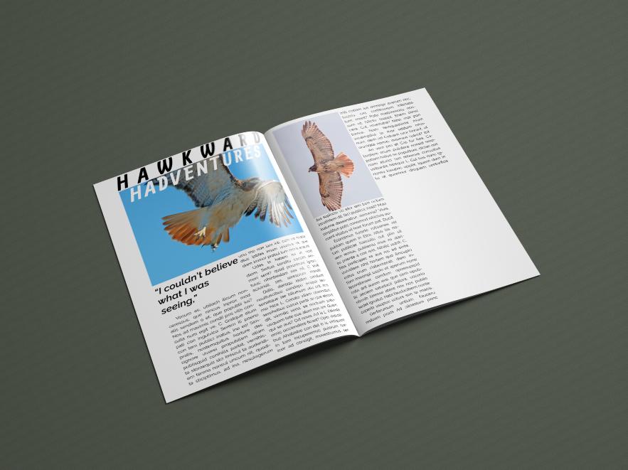 Pages 3 & 4,  Regal Raptor