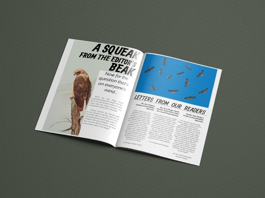 Pages 4 & 5,  Regal Raptor