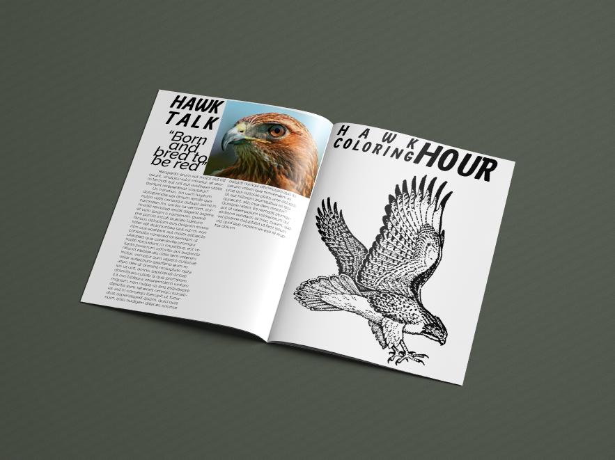Pages 6 & 7,  Regal Raptor