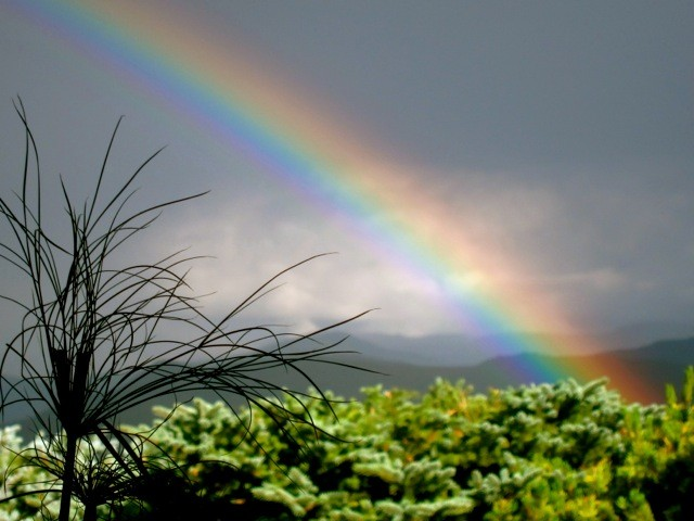 Rainbow3-640x480.jpg