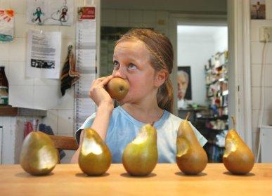 """- Beobachtung: """"Du hast alle Birnen angebissen,Gefühl: ich bin frustriert,Bedürfnis: denn mir ist Rücksicht wichtig und das bedeutet für mich, dass jeder eine Birne bekommt.Bitte: Was meinst du dazu?""""Und jetzt wird das Kind vielleicht sagen, was ihm wichtig ist und wir können eine für alle akzeptable Lösung finden."""